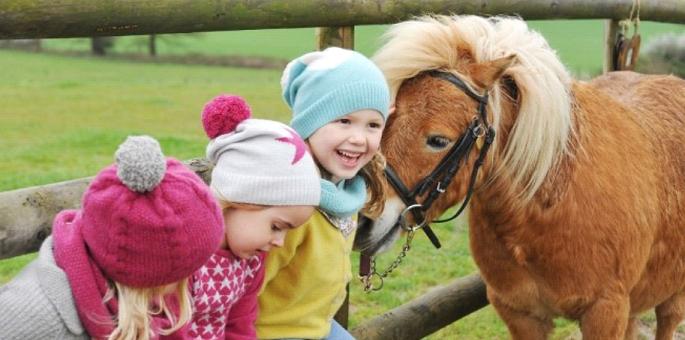 Enfant souriant avec un poney